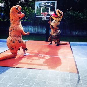 Dinosaurs playing on Sport Court